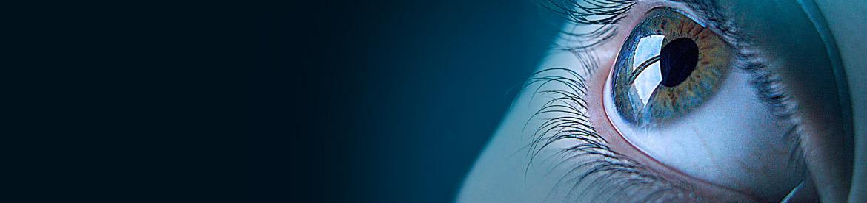 Seguridad electrónicaPonemos a su disposición las últimas tecnologías para garantizar la seguridad y protección de su organización, personal y propiedades. Electronic SecurityWe offer the latest technologies to ensure the safety and protection of their organization, staff and property. Sécurité électronique Nous offrons les dernières technologies pour assurer la sécurité et la protection de leur organisation, le personnel et les biens. Segurança Eletrônica Nós oferecemos as mais recentes tecnologias para garantir a segurança e proteção de sua organização, o pessoal e da propriedade.